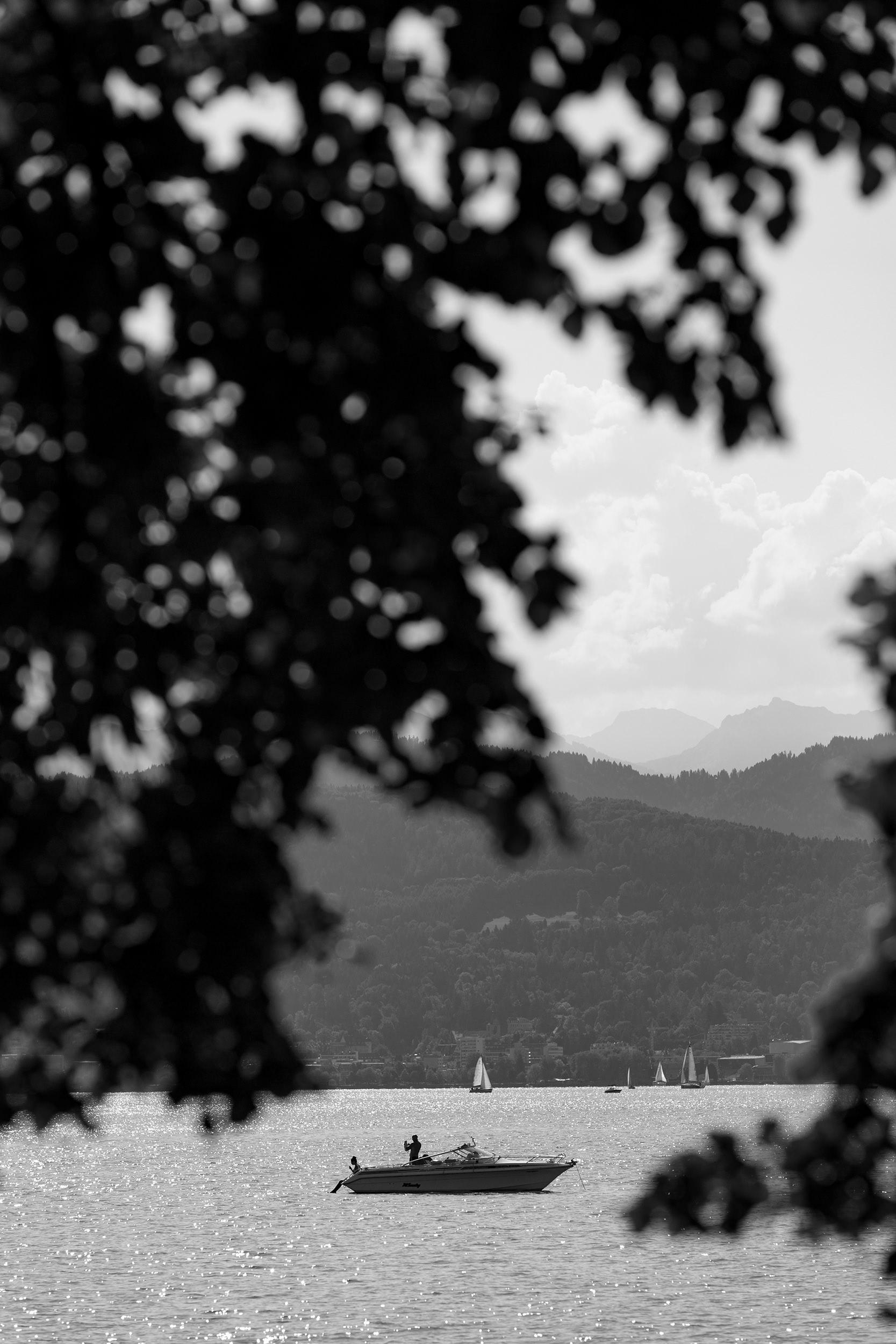Sportboot auf dem sommerlichen Bodensee.