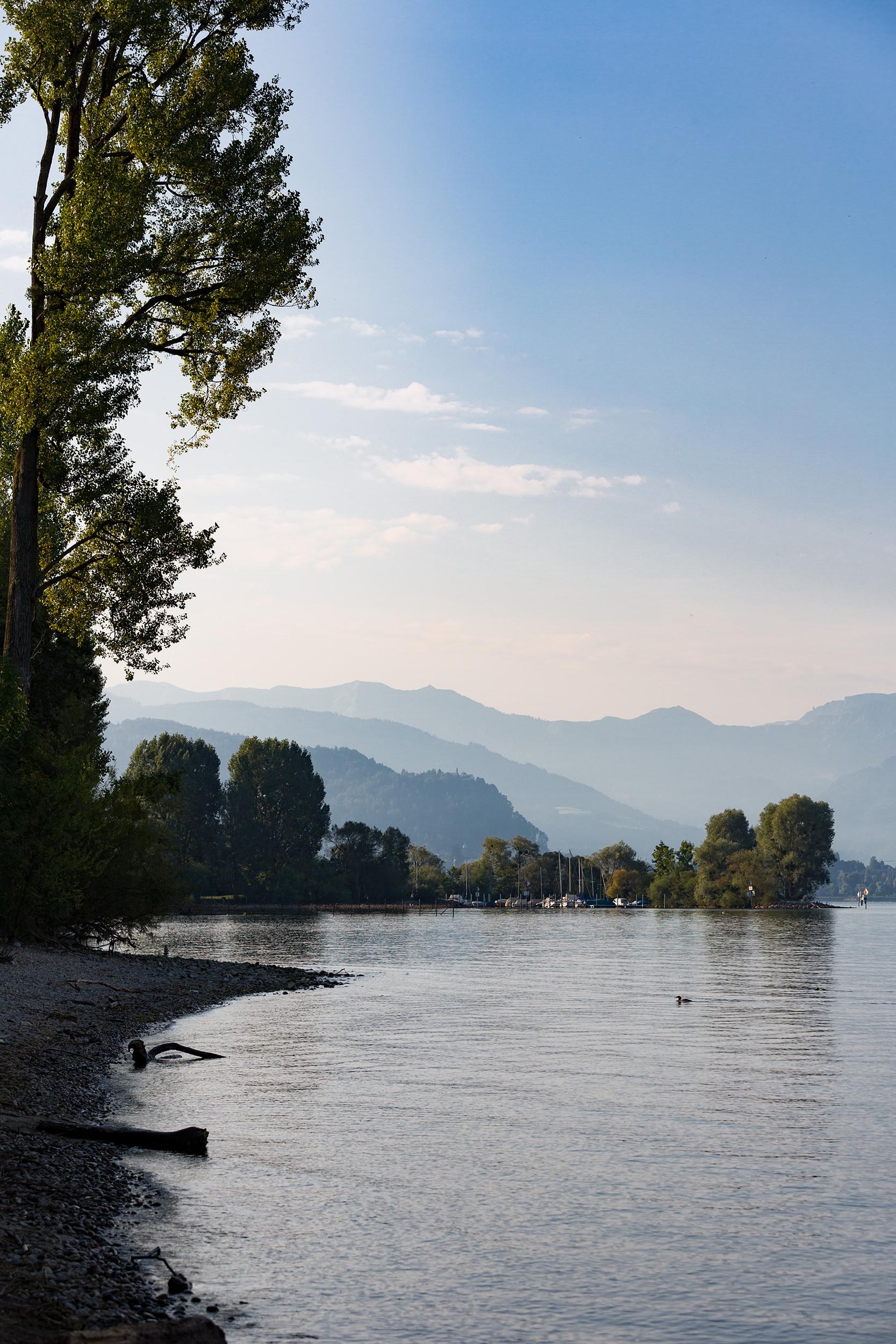 Das Steinufer des Bodensee bei Lindau.