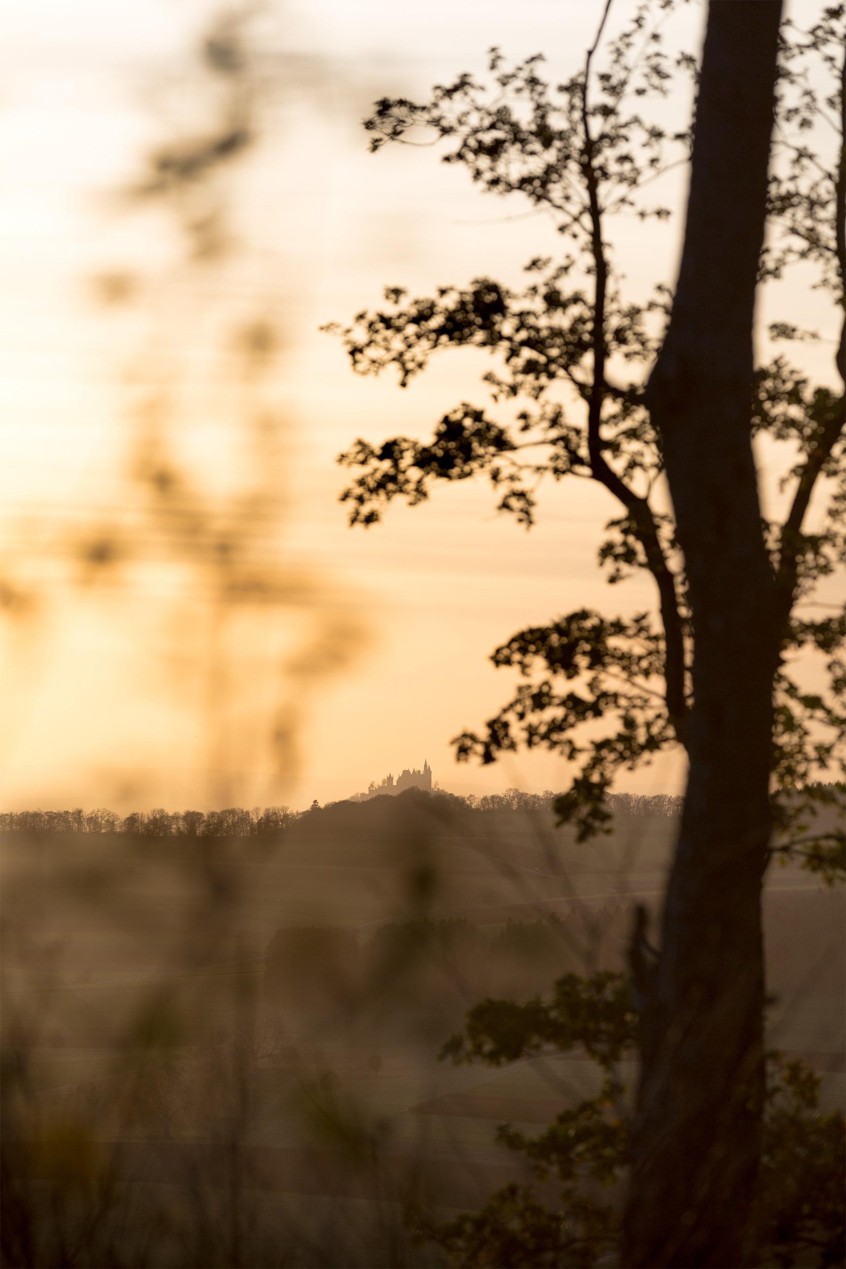 Die Burg Hohenzollern im goldenen Abendlicht.