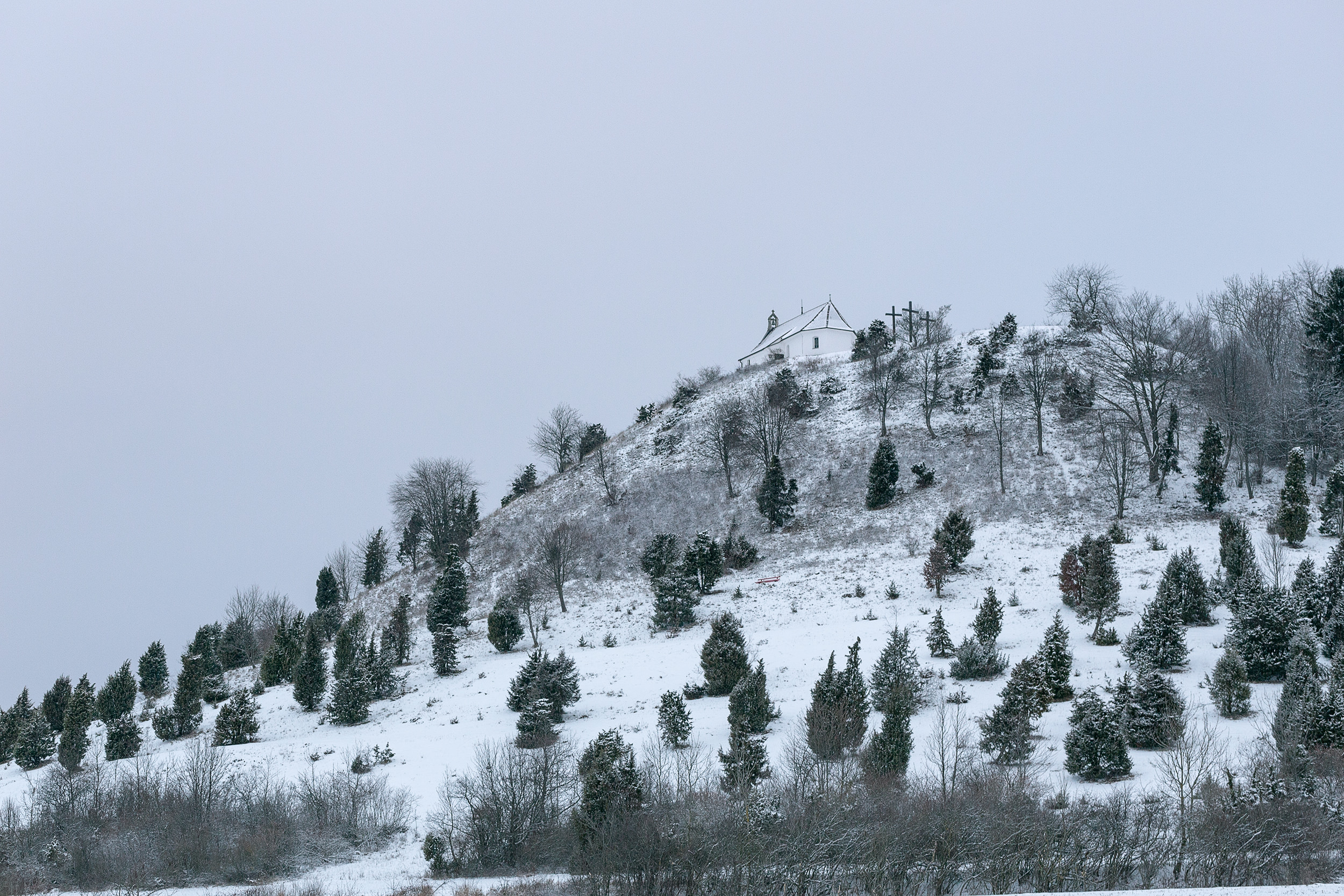 Der erste des Schnee des Jahres beim Kornbühl.