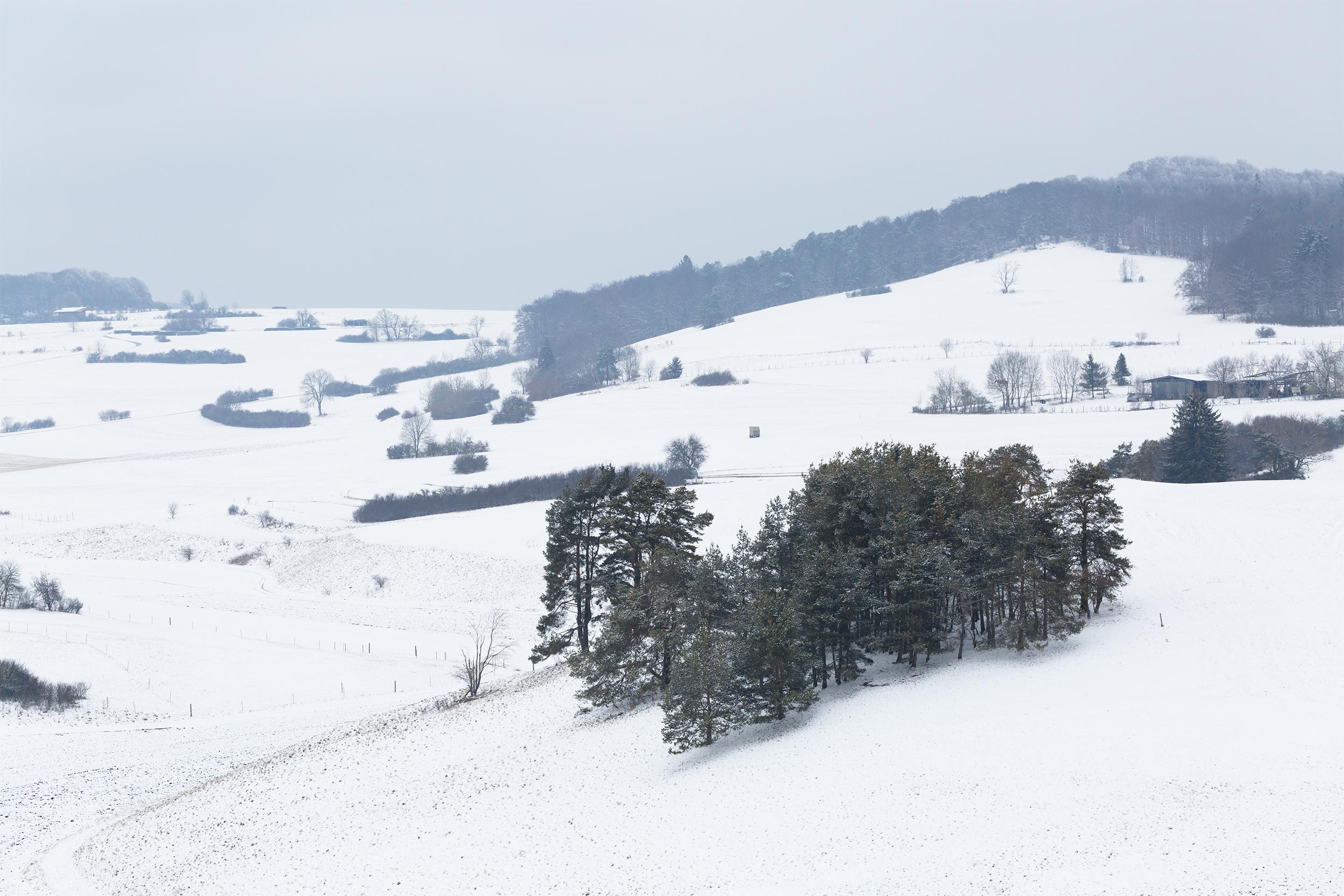 Verschneite Wiesen und Wälder auf der Alb.