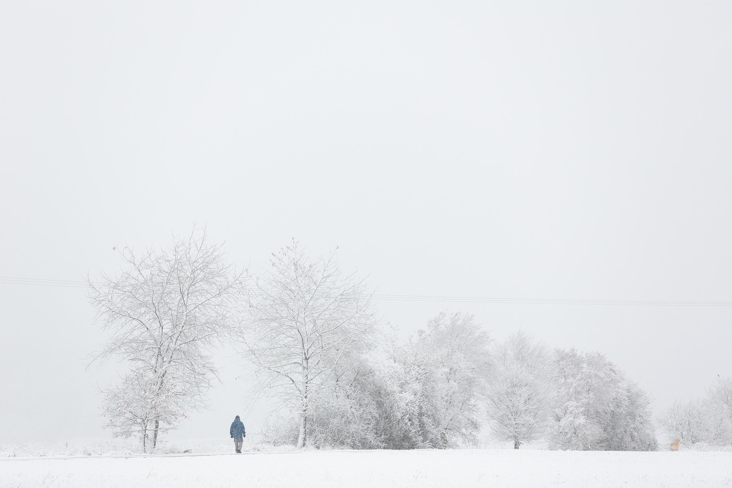 Spaziergänger mit Hund auf der frisch verschneiten Albhochfläche